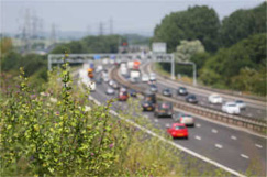 Highways Engand to set new baselines for its environment targets image
