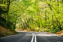 Leafy Surrey seeks bidders for £800m roads deal image